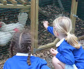 Outdoor opportunities for learning such as the chicken coop are plentiful in the park